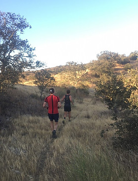 trail running mertola